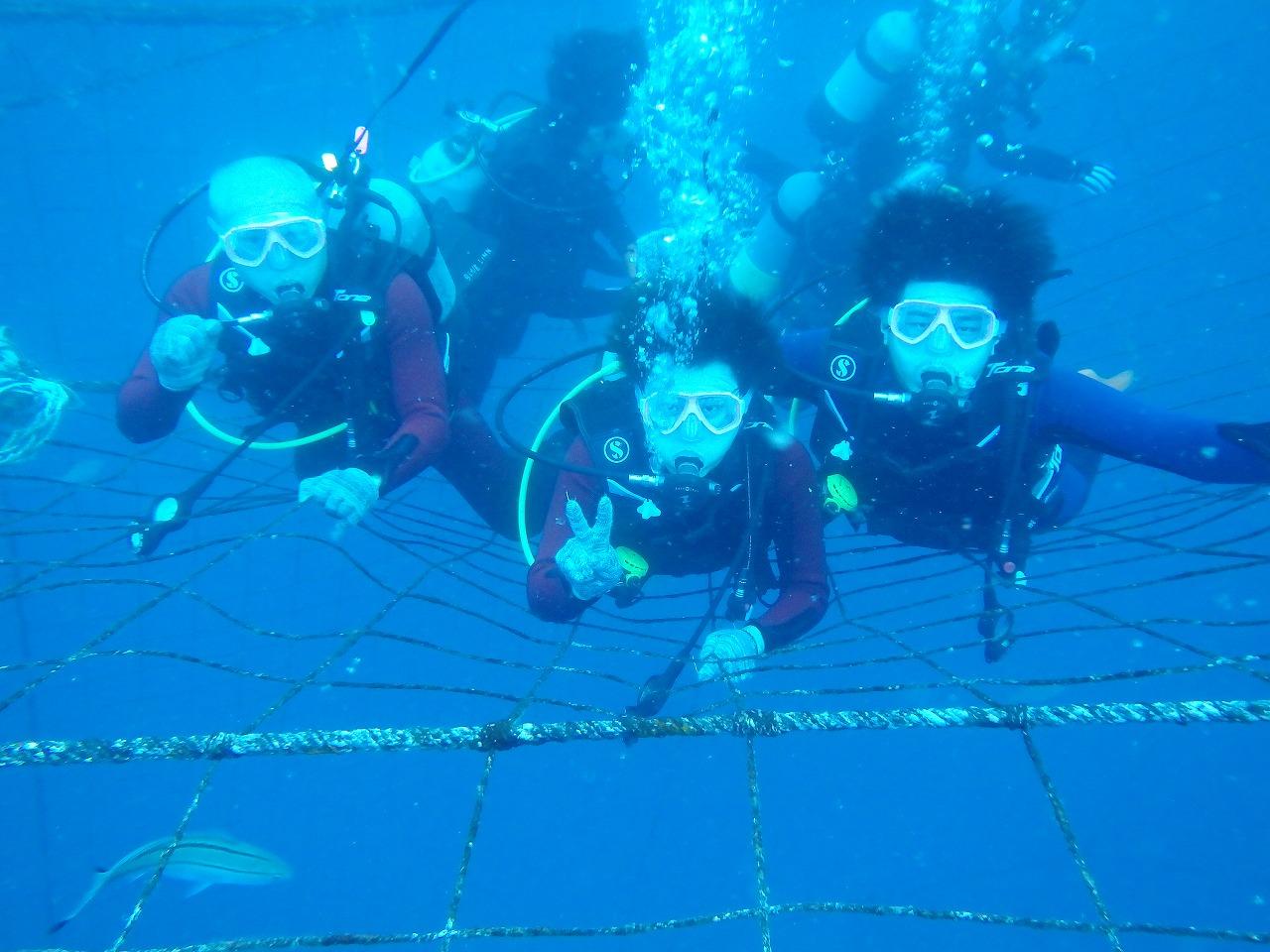 鯨鯊體驗潛水線路