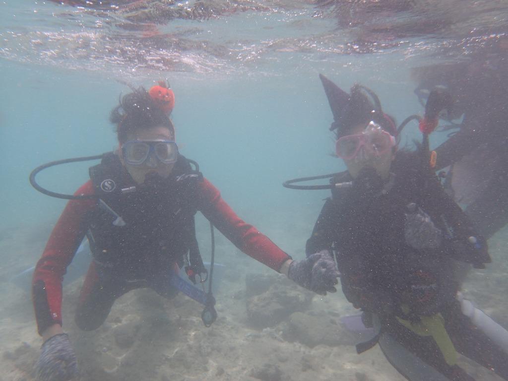 10月15 熱帶魚線路化妝體驗潛水