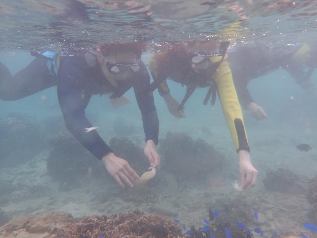 10月27 (下午)熱帶魚線路浮潛