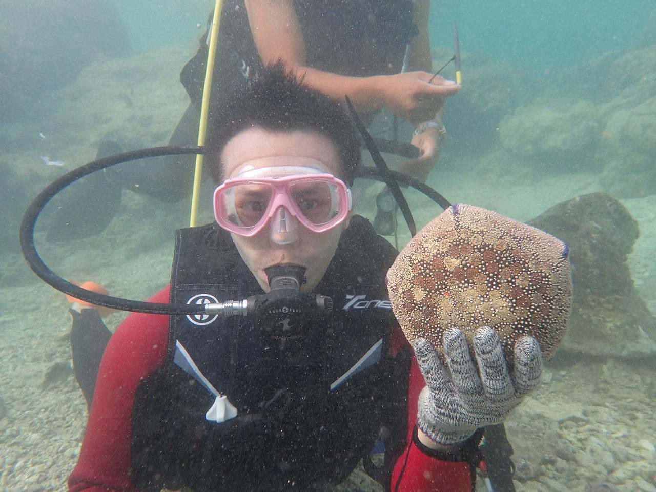 用饅頭海星打排球
