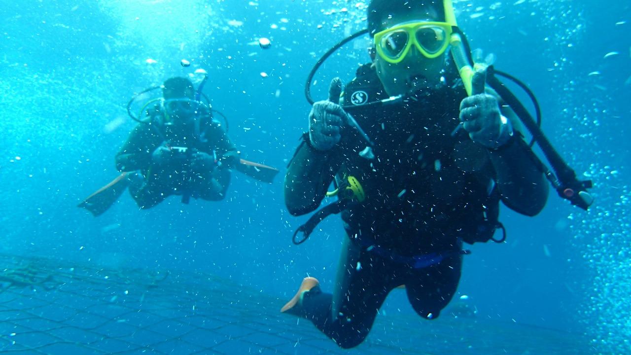 2014.11.01.2位鯨鯊潛水錄像