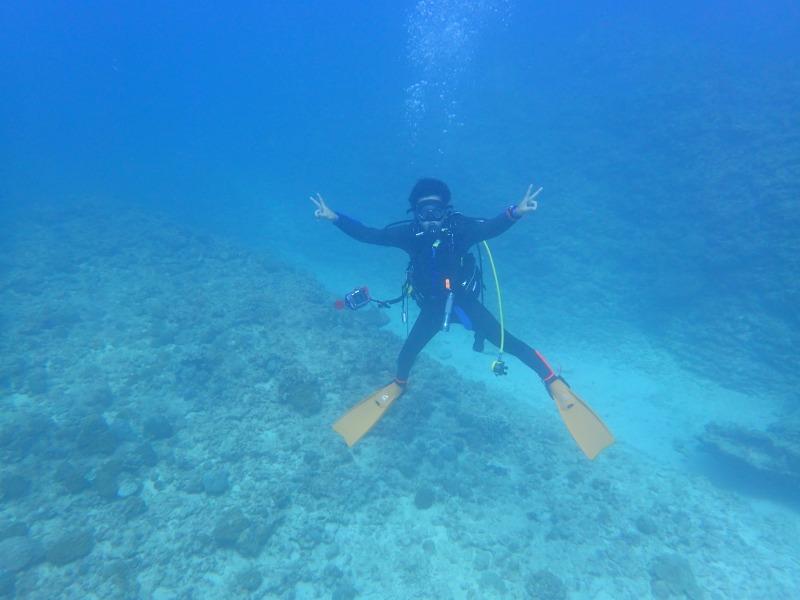 海洋生物大百科10