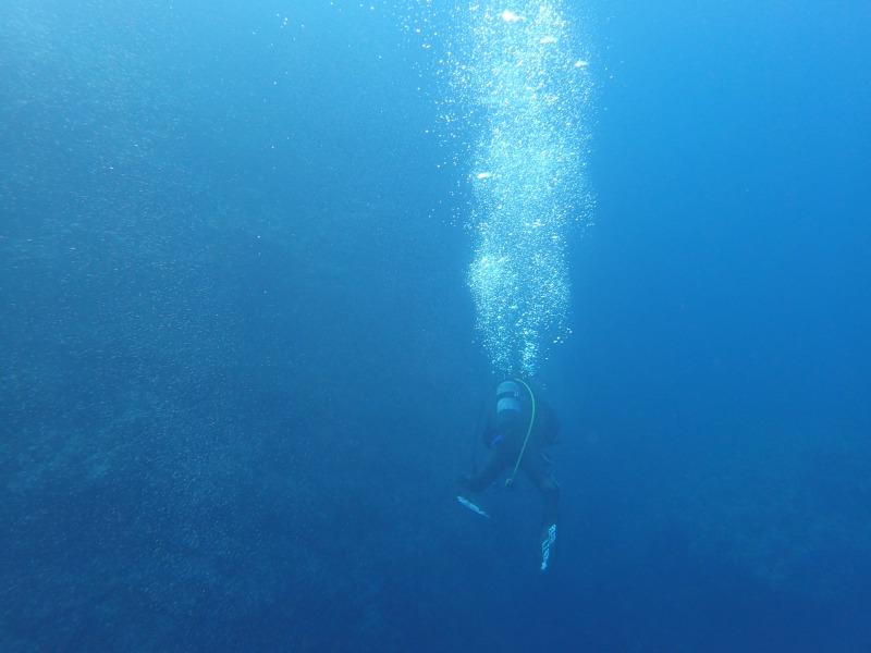 孤獨的潛水員