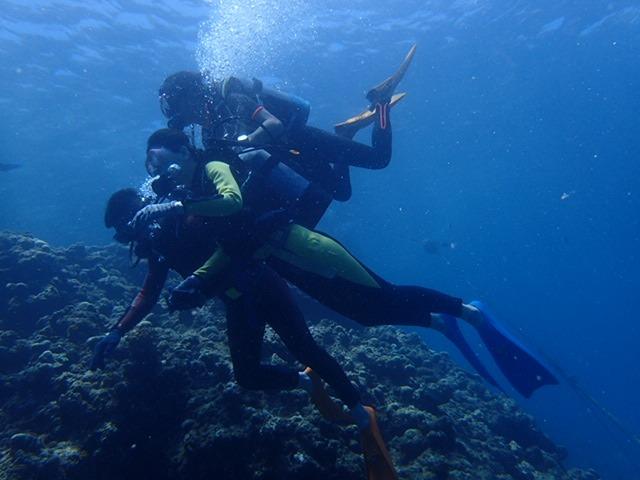 2015.8.1青洞體驗潛水