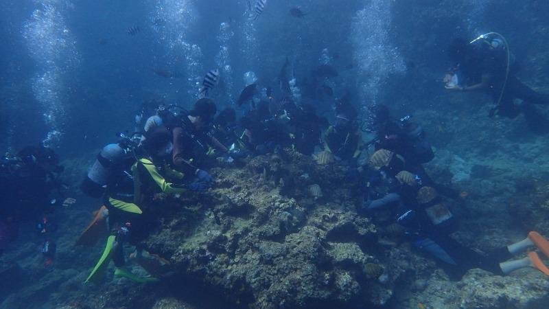 2015.9.11青洞體驗潛水