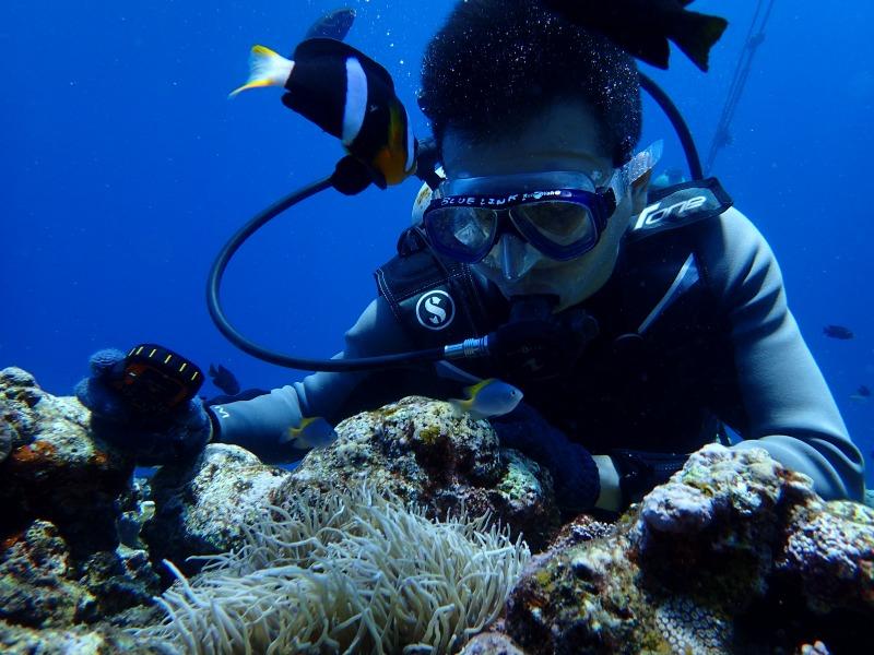 2015.9.13青之洞窟體驗潛水