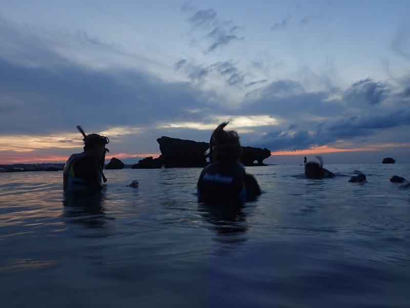 2015.11.21熱帶魚線路浮潛