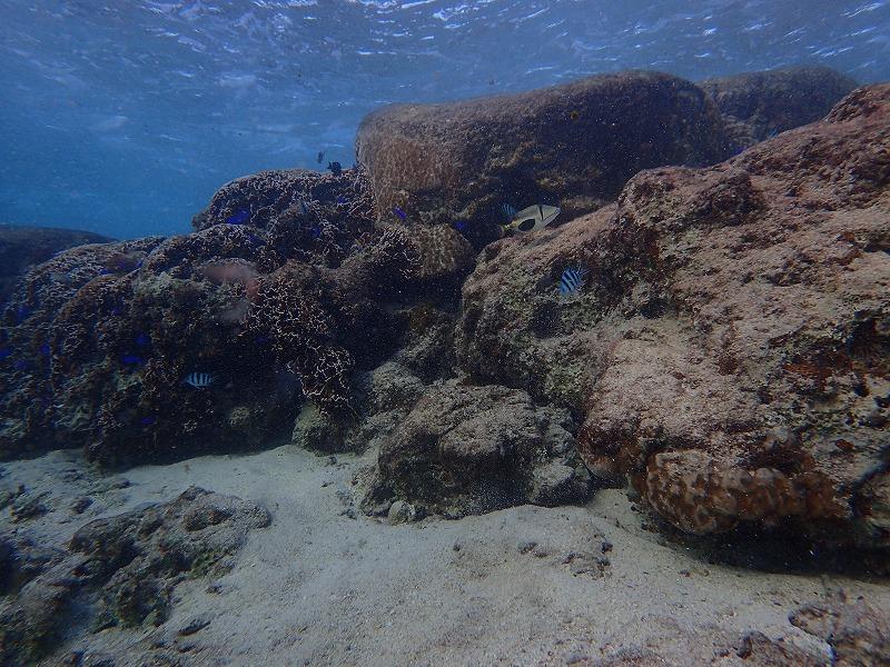 沖繩信息081島尻郡粟國村的觀光休閒·推薦景點