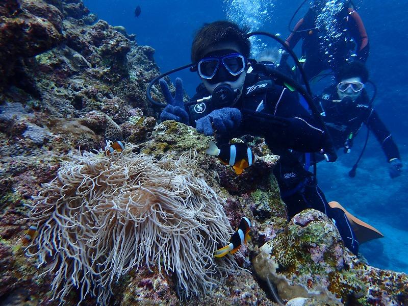 沖繩信息087石垣市的觀光休閒·推薦景點是