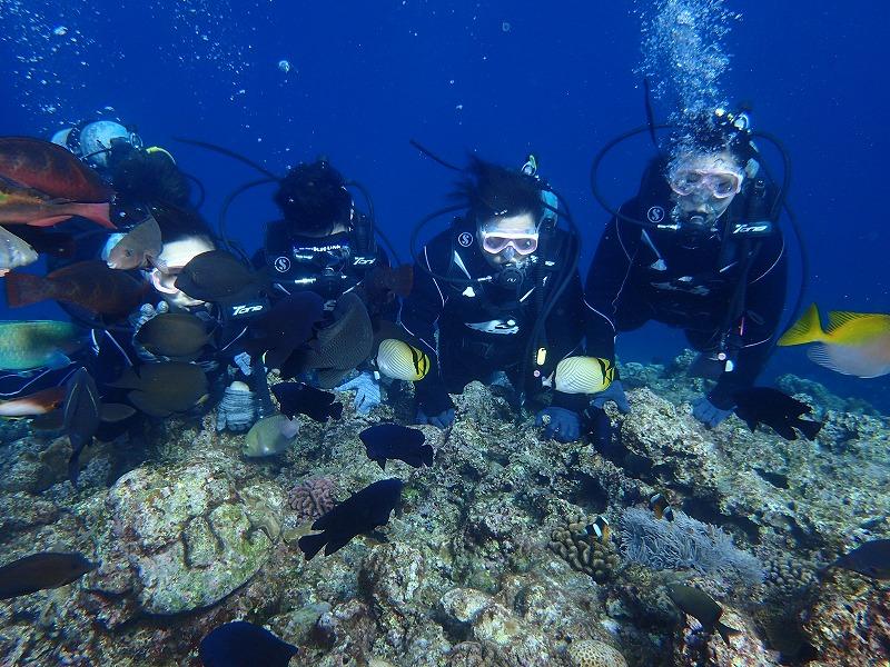 2016.1.2青之洞窟體驗潛水