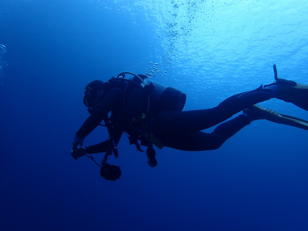 邊戶穹頂有執照潛水(2)