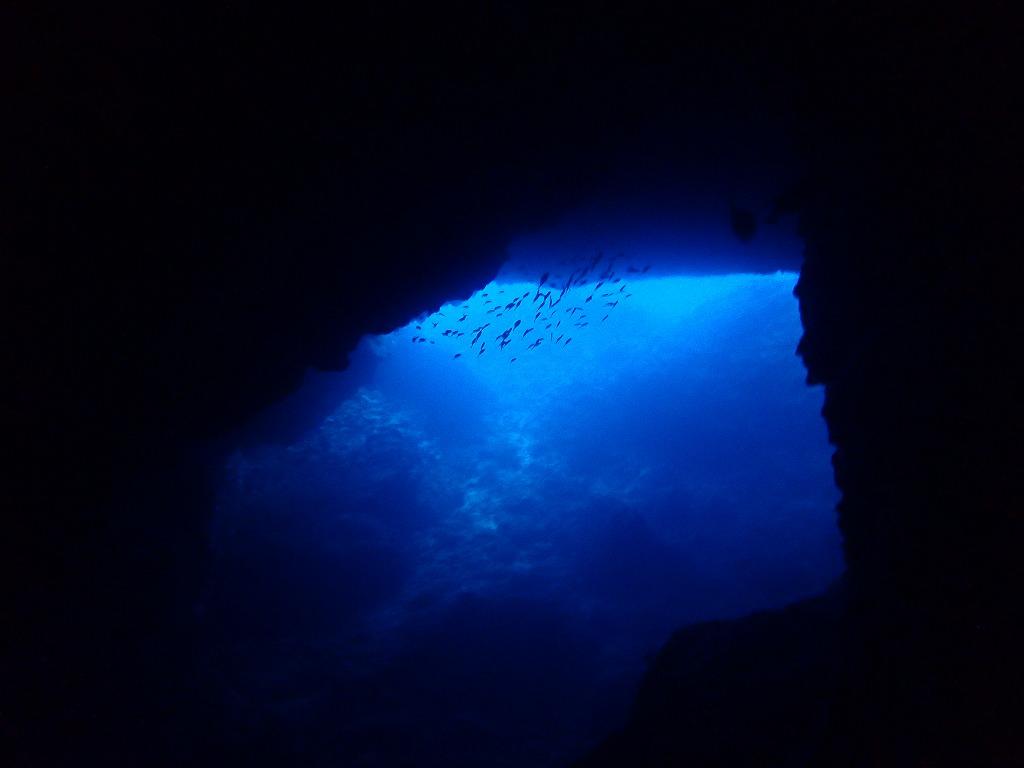 邊戶穹頂有執照潛水(8)