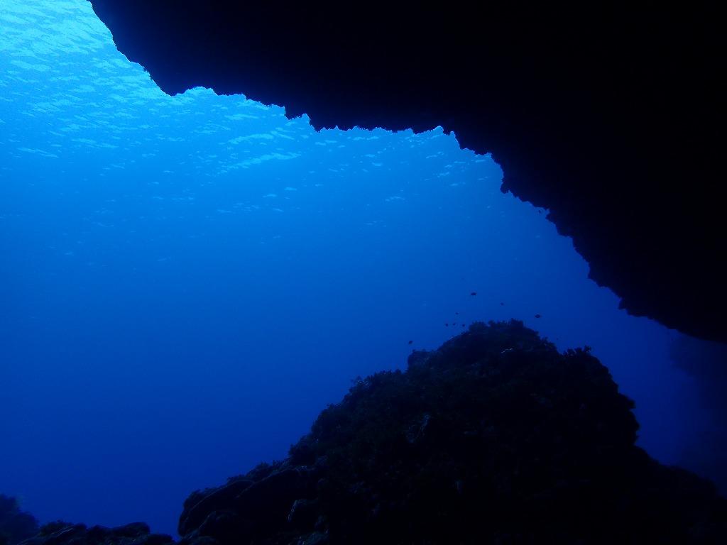 邊戶穹頂有執照潛水(12)
