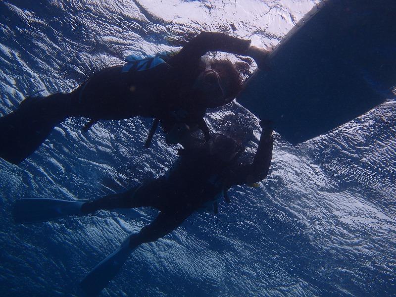 山田熱帶魚珊瑚樂園浮潛