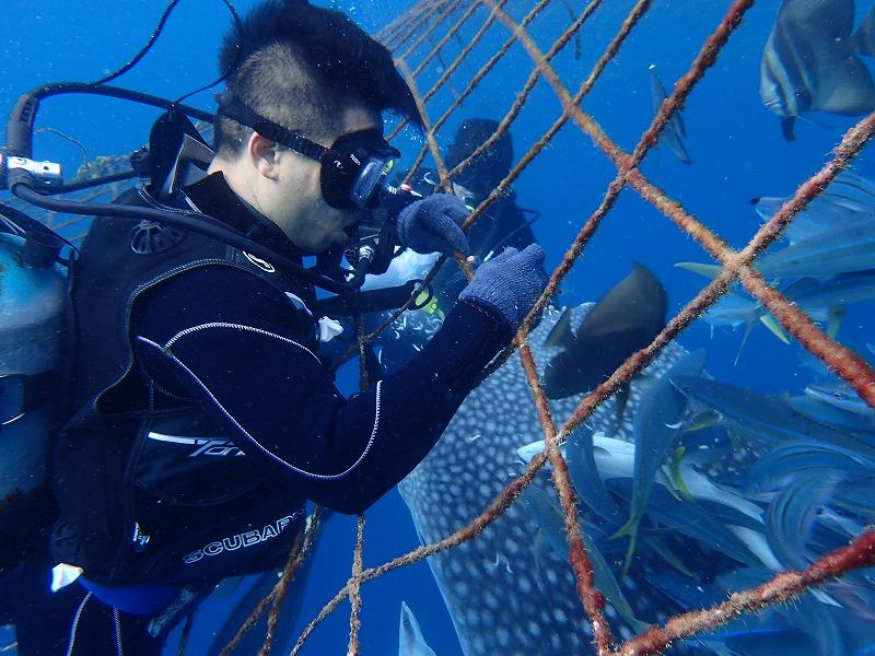 2016.3.2鯨鯊線路體驗潛水