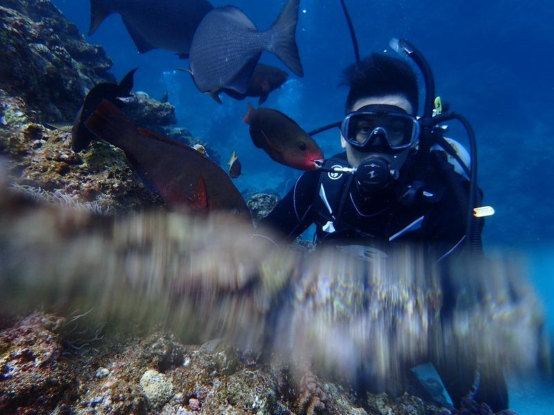 2016.3.2青之洞窟體驗潛水