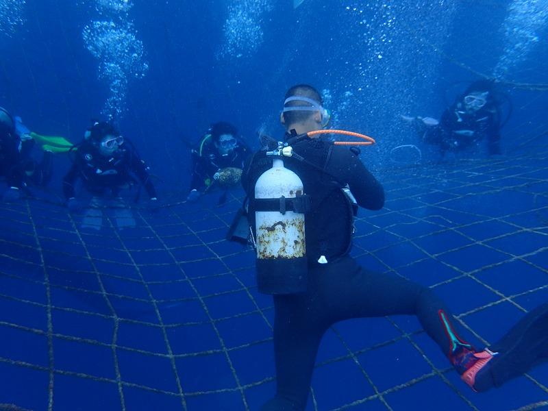 2016.3.27鯨鯊線路體驗潛水