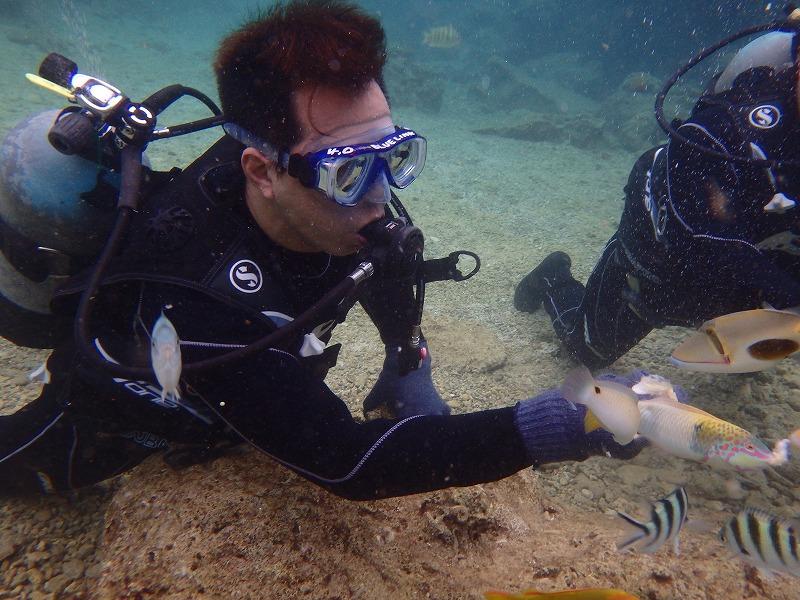 2016.4.13熱帶魚線路體驗潛水