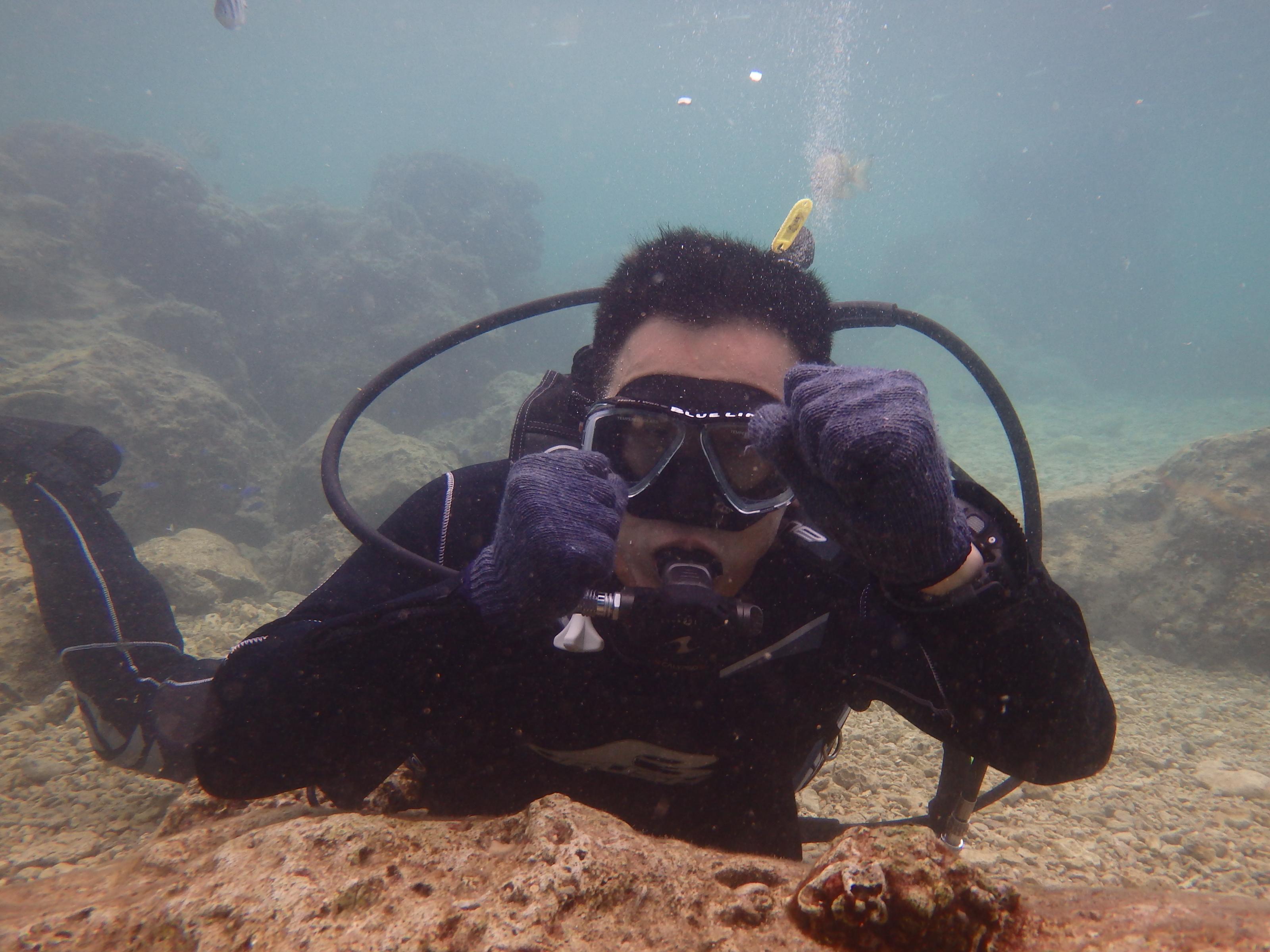 2016.4.16熱帶魚線路體驗潛水