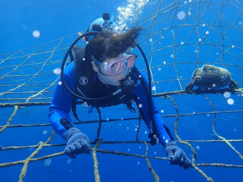 2016年5月15日鯨鯊線路體驗潛水