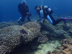 水肺(scuba)