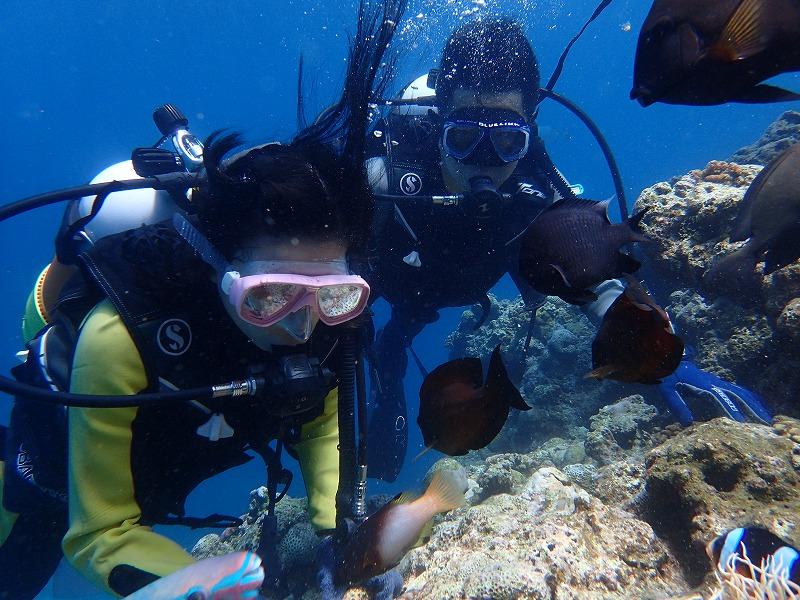 2016年6月18日青之洞窟有執照潛水