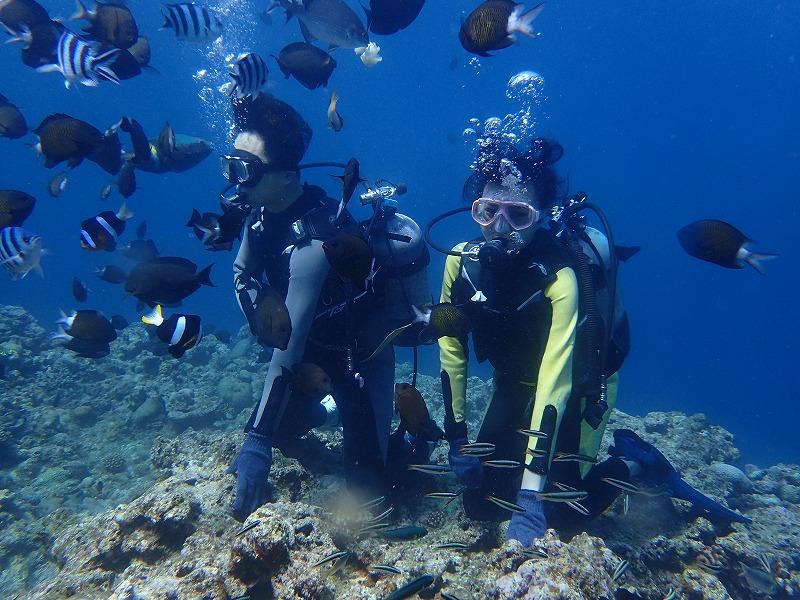 2016年6月20日青之洞窟體驗潛水