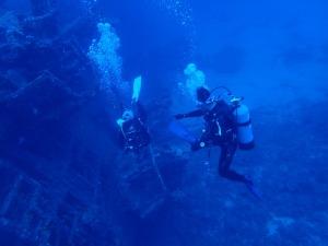 海洋實習的重要性