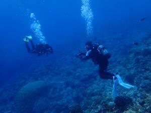 乾衣潛水   濕衣潛水