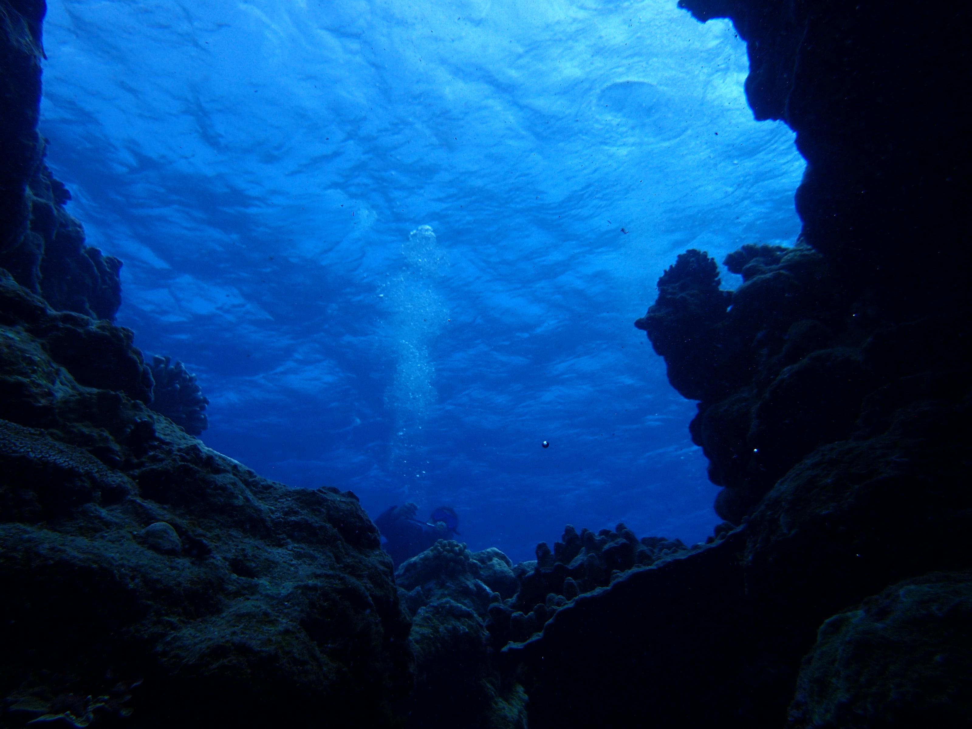 2016年7月15日 慶良間群島線路有執照潛水