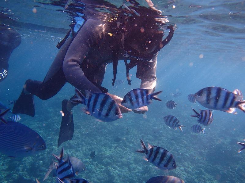 2016年7月19日 青洞浮潜