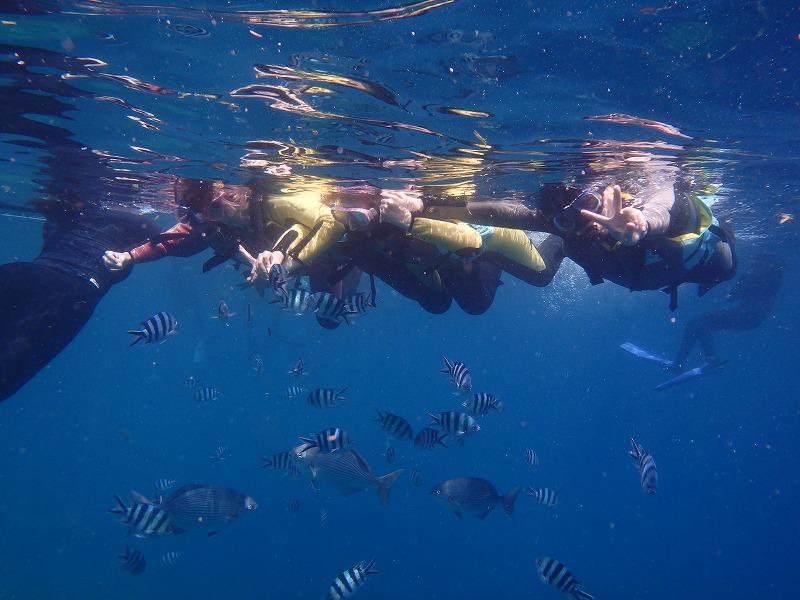2016年7月24日青之洞窟浮潛
