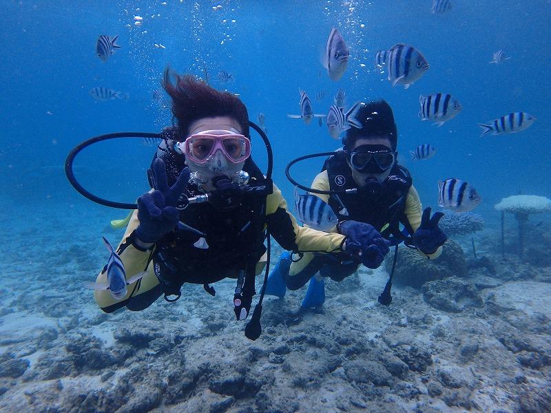 2016年9月27日 熱帶魚線路體驗潛水&浮潛
