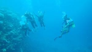yamada fan diving