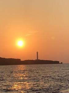 日落Sunset cruise
