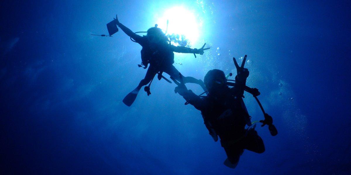 慶良間諸島深潛(有執照)一個眼睛的照片